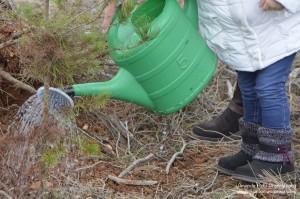 Noves jornades de recuperació del bosc de Can Deu