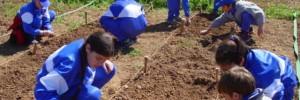Actividad destacada Actividades para Escuelas