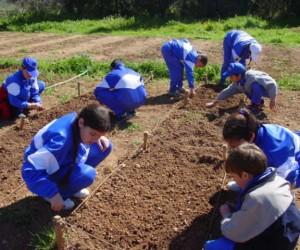Activitat destacada Escoles