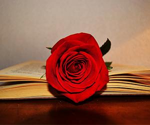 Diada del Llibre